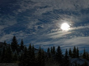 moon-clouds-forest